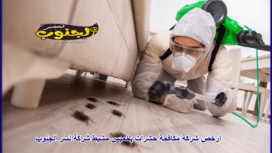 Photo of شركة مكافحة حشرات بخميس مشيط 0531559396