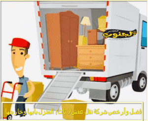 شركة نقل اثاث بابها