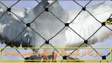 شركة تركيب طارد حمام بخميس مشيط